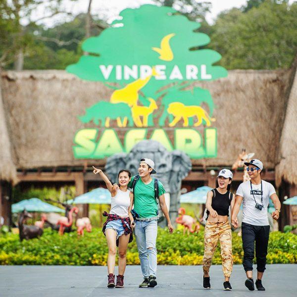 vin safari